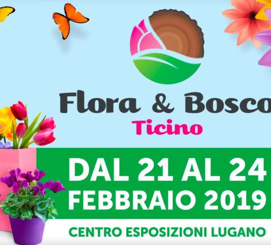 Flora e Bosco Ticino dal 21 al 24 febbraio 2019.